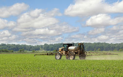 Spraying Corn Crop Stock Image