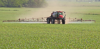 Spraying a Corn Field Stock Images
