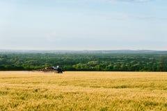 Spraying fertilization of wheat fields Royalty Free Stock Image