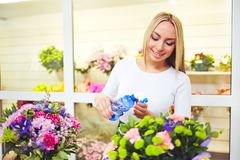 Spraying flowers Royalty Free Stock Photography
