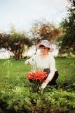 Spraying flowers. Royalty Free Stock Photo
