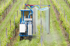 Spraying Grape Vines In The Vineyard Royalty Free Stock Photo