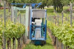 Spraying Grape Vines In The Vineyard Royalty Free Stock Photo