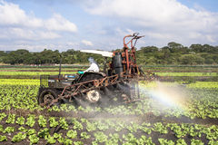 Spraying lettuce. MOGI DAS CRUZES, BRAZIL, JULY 01, 2009. Spraying lettuce crops field with tractor and sprayer Royalty Free Stock Images