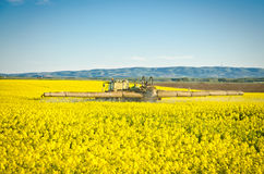 Spraying oilseed rape Royalty Free Stock Photography