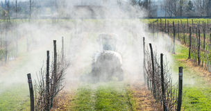 Spraying orchard Stock Photo