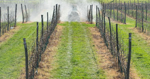 Spraying orchard Stock Images