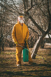 Spraying In The Orchard. Mature man in protection suit spraying tree with chemicals in the orchard before winter Stock Photos