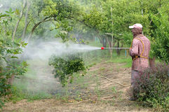 Spraying pesticide Royalty Free Stock Photography