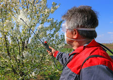 Spraying pesticide. Agricultural worker in a cherry orchard spraying pesticide Stock Photos