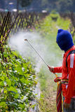 Spraying pesticide Royalty Free Stock Images