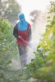 Spraying pesticide Royalty Free Stock Image