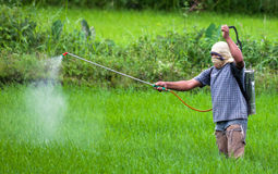 Spraying pesticide in the Philippines Royalty Free Stock Photos