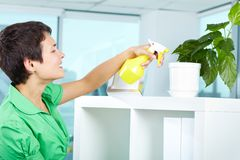 Spraying plant. Photo of young woman spraying leaves of domestic plant Stock Photos