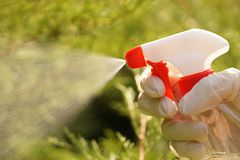 A stream of liquids highlighted by the sun. Spraying or spraying stock photo