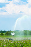 Spraying Potato Crops. Water irrigation of potato crops in Shropshire with beautiful summer sky Royalty Free Stock Photos