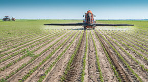 Spraying soya bean field Royalty Free Stock Image