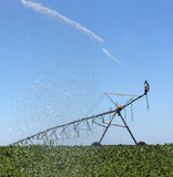 Spraying Soybean Field Stock Photos