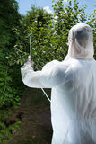 Spraying tree in a orchard Stock Photo
