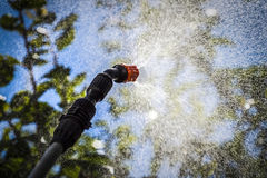 Spraying trees against pests. Spraying the leaves of trees against pests with chemicals Stock Images