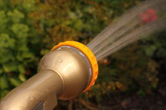 Spraying water on garden A Stock Image