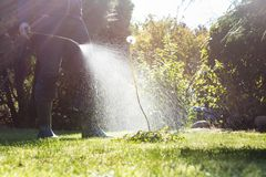 Spraying weeds in the garden stock photo