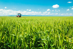 Spraying wheat crops field, agricultural landscape. Stock Photo
