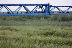 Spraying wheat Royalty Free Stock Photo
