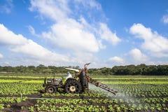 Spraying wheat Royalty Free Stock Image