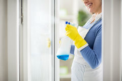 Spraying on window with cleanser. Smiling woman spraying on window with liquid cleanser Royalty Free Stock Photo