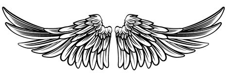 Spread Pair of Angel or Eagle Wings. A pair set of spread out eagle bird or angel wings stock illustration