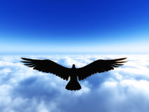 Spread the wing and fly in freedom Royalty Free Stock Photo