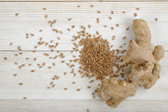 Spreaded pearl barley and ginger on wooden panel. Royalty Free Stock Photos