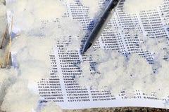 Spreadsheet on ice Stock Photography