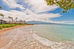 Spreckelsville strand i Maui, Hawaii Royaltyfri Bild