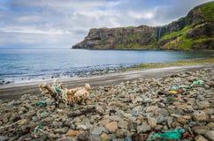 Spreco alla spiaggia di Talisker sull'isola di Skye in Scozia Fotografie Stock Libere da Diritti