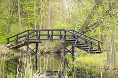 Spreewald, Mooi Landschap in Duitsland Stock Afbeeldingen