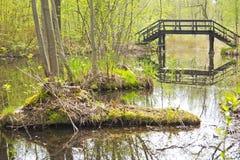 Spreewald, paisaje hermoso en Alemania Fotos de archivo libres de regalías