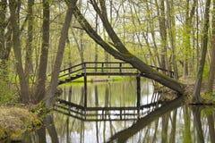 Spreewald, paisaje hermoso en Alemania Imagen de archivo