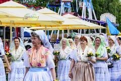 Spreewald und Schutz-fest in Luebbenau 7/2/2016 Lizenzfreie Stockfotos