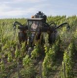 Sprej av en vingård med insekticid arkivbilder