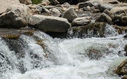 Sprej och skum av en bergflod Den pittoreska naturen av Rocky Mountains Colorado Förenta staterna Arkivbild