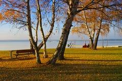 Spremberg jezioro w Brandenburg zdjęcia stock