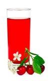 Spremuta con i fogli ed i fiori delle ciliege Fotografie Stock