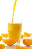 Spremuta fresca e fette arancioni Fotografia Stock Libera da Diritti