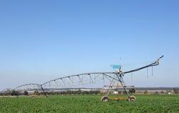 Sprengerbewässerung auf dem Gebiet für die Bewässerung Stockbild