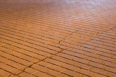 Spricka i trottoar Royaltyfri Fotografi