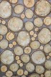 Sprickor årliga cirklar, skälltextur av trä, rund form, som snidas från ett stort och litet träd Vertikal bakgrund och arkivbild