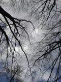 Sprickor i himlen Arkivfoto