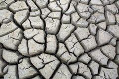 Sprickor i jordning under torka för torr säsong Arkivfoto